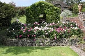 garden-850x558